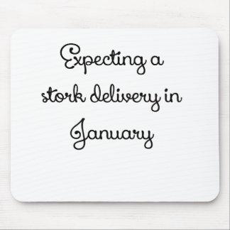 Förvänta en storkleverans i January.png Mus Matta