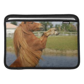 Fostra för miniatyrhäst sleeve för MacBook air