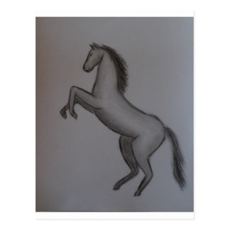 fostra hästen vykort
