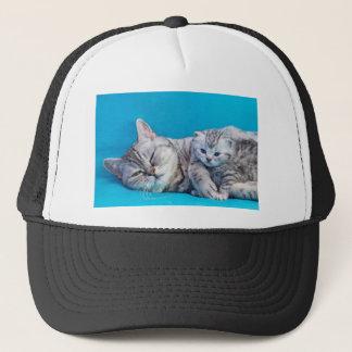 Fostra katten som ljuger med kattungen på keps