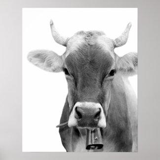 Foto för boskap för svartvit kolantgård djurt poster