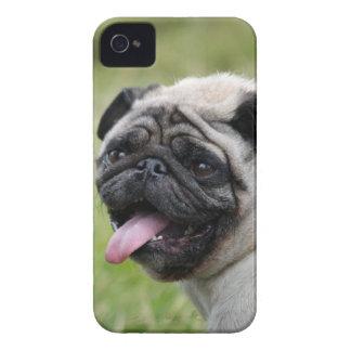 Foto för fodral för mopshundblackberry bold Case-Mate iPhone 4 cases