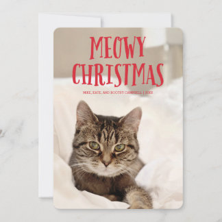 Meowy Christmas Cute Kitty Cat | Holiday Photo
