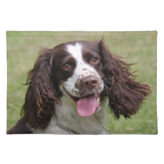 Foto för hund för Spaniel för engelsk Springer Bordstablett