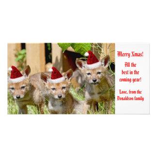 Foto för julbabyprärievarg skräddarsydda fotokort