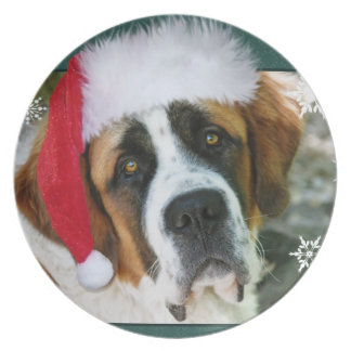 Foto för julSt Bernard hund Tallrik