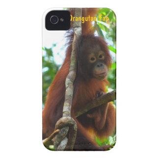 Foto för klubb för fläkt för Krista Orangutan iPhone 4 Cover