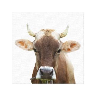 Foto för nötkreatur för djur boskap för kolantgård canvastryck
