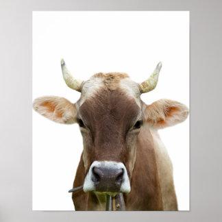 Foto för nötkreatur för djur boskap för kolantgård poster