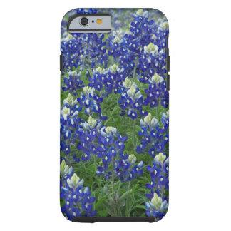 Foto för Texas Bluebonnetsfält Tough iPhone 6 Fodral