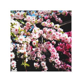 Fotoet av körsbärblommar slogg in kanfas canvastryck