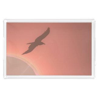 Fotograferar den rosa solen för den fridsamma bricka