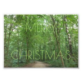 Fotografi för natur för god julvägträd