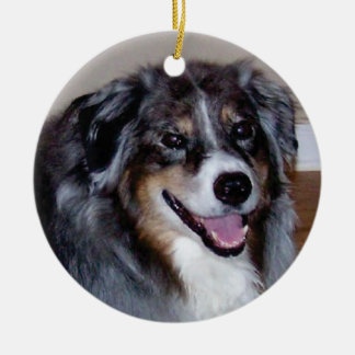 photo ornament - customize with your own pet