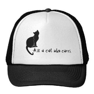 Fråga en katt som att bry sig hatten keps