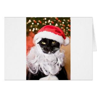 Franny Claus ledsen Santa kattunge Hälsningskort