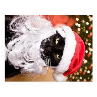 Franny Claus ledsen Santa kattunge Vykort