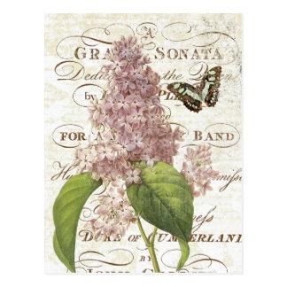 Fransk botanisk lila vykort för vintage