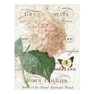 Fransk botanisk vanlig hortensiavykort för vintage vykort