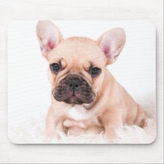 Fransk bulldog. musmattor