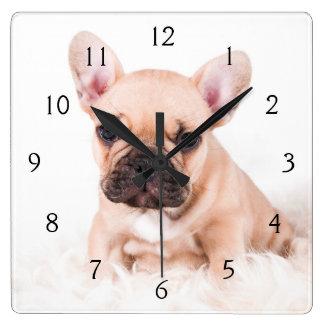 Fransk bulldogg fyrkantig klocka