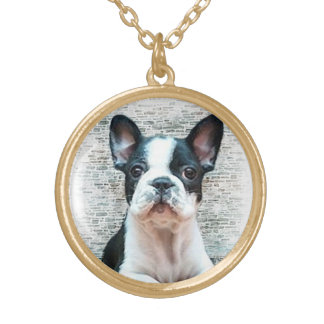 Fransk bulldogg guldpläterat halsband