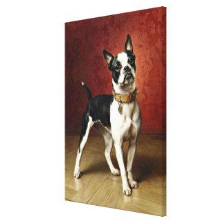 Fransk bulldogg - målning av Carl Reichert Canvastryck