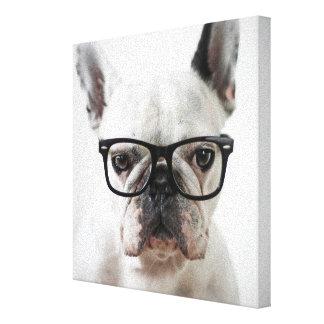 Fransk bulldogg som ha på sig canvastryck