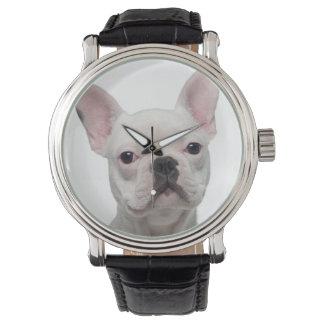 Fransk bulldoggvalp (5 gammala månader) armbandsur