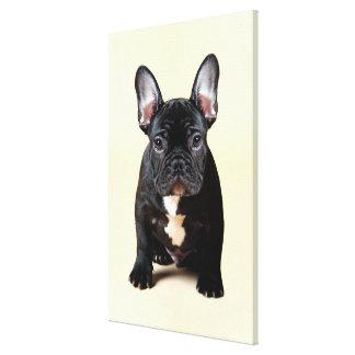 Fransk bulldoggvalpsitta canvastryck