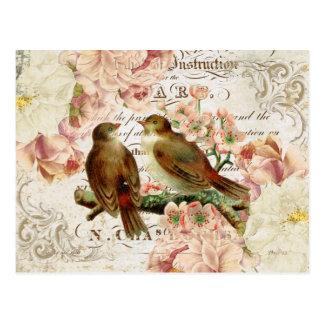 Fransk fågelvykort för vintage vykort