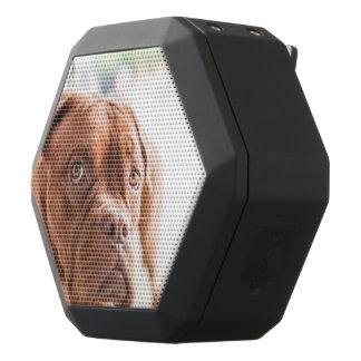 Fransk Mastiff Svart Bluetooth Högtalare