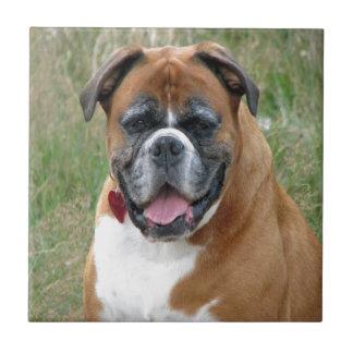 fred och glädje för boxarehundkärlek kakelplatta