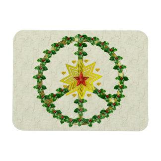 Fredstjärnajul Rektangel Magneter