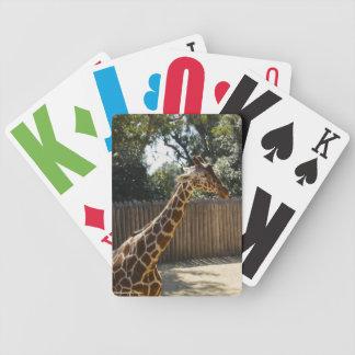 Fridsam giraff spelkort