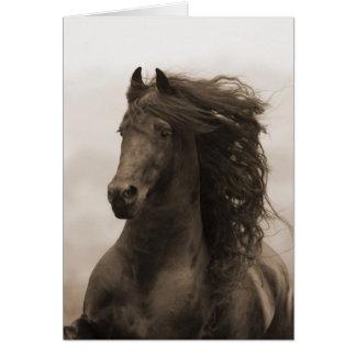 Friesianen kör hästhälsningkortet hälsningskort