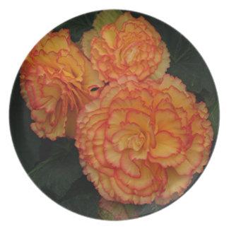 Frilled begonias för gul &orange tallrik