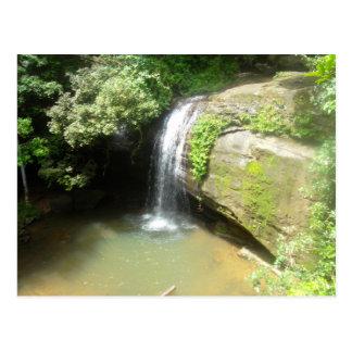 Frodig Rainforestvattenfallvykort Vykort
