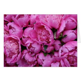 Frodiga rosa pionblommor hälsningskort