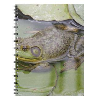 Froggy Anteckningsbok