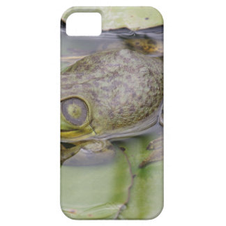 Froggy Barely There iPhone 5 Fodral