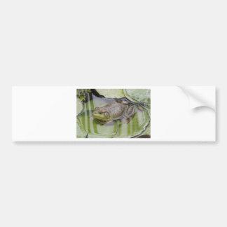Froggy Bildekal