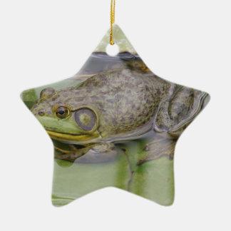 Froggy Julgransprydnad Keramik