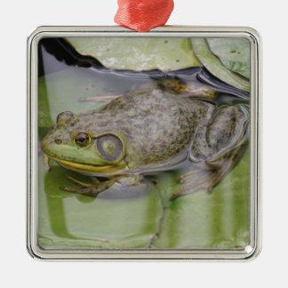 Froggy Julgransprydnad Metall