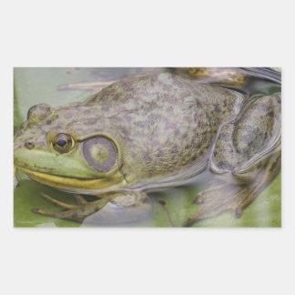 Froggy Rektangulärt Klistermärke