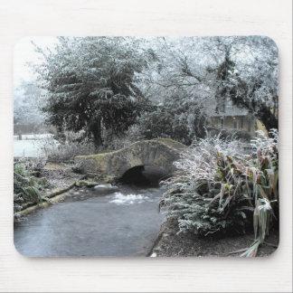 Frost och is i en Somerset trädgård Musmatta