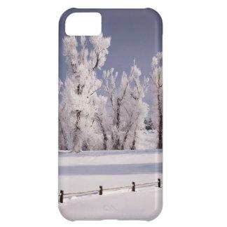 Frost täckt träd och staket, Colorado iPhone 5C Fodral