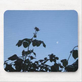 Frostat steg med månen musmatta
