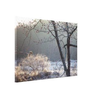 Frostig morgon sträckt kanvastryck