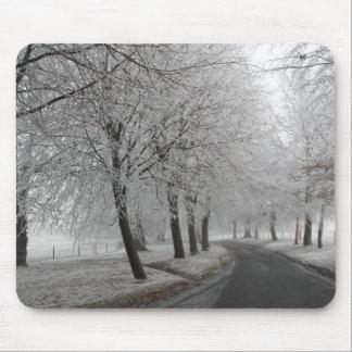 Frostig resa musmatta